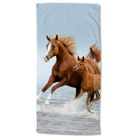 Good Morning Beach Towel FREE 75x150 cm Brown and Blue