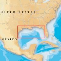 NAVIONICS PLATINUM PLUS GULF OF MEXICO MSD/907P+