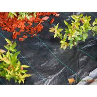 Nature Weed Control Ground Cover 1x50 m Black
