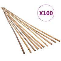 vidaXL Garden Bamboo Stakes 100 pcs 150 cm