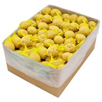 vidaXL Fat Balls with Nets 200 pcs 90 g