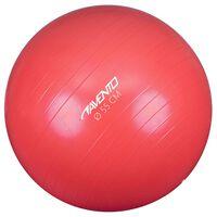 Avento Fitness/Gym Ball Dia. 55 cm Pink