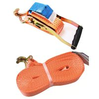 ProPlus Tie Down Strap with Ratchet + 2 Hooks 8 meter 5000kg
