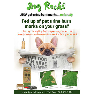 Dog Rocks Anti-Urine Stains Rocks for Dogs